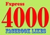 I will deliver 4000+ facebook likes within 48 hours