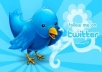 create custom 20 Twitter profiles for your t w i t t e r online market/promotions for