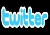 give you 4000++ US twitter follower in your any username for