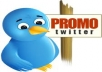 send you 100 safe, permanent RETWETS of your tweet  for