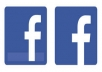 add 200 FACEBOOK Likes to your Fan Page all real looking facebook page  for