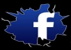 provide 1000+ Real FACEBOOK Likes to your fan page  for