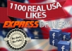 give you 1100+ USA guarenteed Facebook, Facebook likes / fans in 2 hour