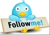 send you 15000 REAL Twitter Followers [No Bots] in less than 2 days