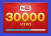 *give you 30,000 youtube views to your youtube video, all views within 96 hours