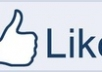 supply you 500 facebook post likes