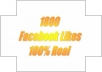give you 1800 Facebook Likes, 100% Real