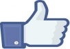 provide 1500+ High Quality Facebook likes to your fanpage, USA Fans within 24hrs for