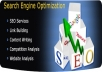 Provide Complete Pro Seo Package