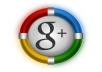 Give u 55 Genuine Google +1 Plus One Votes