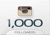 Provide you 1000+ Instagram Followers 100% real on your website