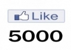 Give u 5000+ Staying High Quality Facebook Fanpages/ Photo Likes.