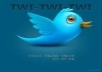 give you 2500+ twitter followers 100% real and active users only