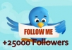 give you 25000+ High Quality Twitter Followers