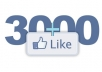 give you 3000+ PERMANENT Facebook likes to your facebook fanpage