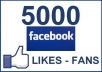 Give You 5000+++ Facebook Permanent Fans/Likes To Your Facebook Fans Page Guaranteed within 50 hrs for