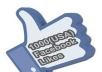 Give You 1,000+ *USA High Quality & Staying* Facebook Likes
