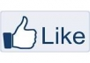give you 1445  Facebook Likes, 100% Real