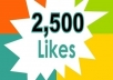 Give you 2,500++ Real [PERMANENT] facebook likes to your page within 24 hours