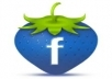 submit you 777+1 Facebook likes 100% real & active on your account
