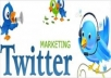 add 16000+ Twitter follower to your any twitter account within 40 hours