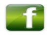 send you 1333+ Facebook likes 100% real & active on your account