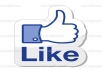 give you 1000+ face book page likes/fans