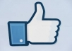 [not Accept Fanpage,photo,status] 5000+ Real Usa Facebook likes your web site