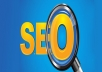 give you total seo service($300 value)