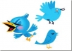 add 16000 twitter followers[Staying forever] to your account twitter,No un follow