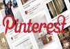 add quickly/fastly 300 pinterest followers from different people /NO bots /spread over 24 hours/more naturaly for