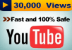 I will give 30,000 views in 24 hours  Guaranteed Results