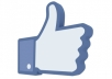 I can give you real looking 1000+ like for your facebook fanpage