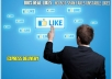 give you 5,000++ USA Real looking [PERMANENT] facebook likes to your fan page in 24 hours