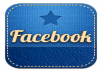 send you 1800 USA likes to your Facebook fan page in less than a 25 hours