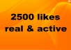dd 2500+ Facebook Likes to anyFan Page, get Real Looking Facebook likes / Fans
