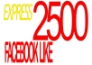 deliver 2500+ Facebook Likes to your Facebook Pages, FB Like / fans on Fan Page, no admin, Speedy Fb Service