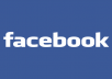 provide you 50000+ permanent facebook likes to your page within 5 days