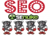 use Senuke XCr The Full Monty with The Best Spinner and crawl it by LINDEXED