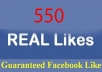 will give 500+ High Quality Real, Active Facebook Likes or Fans to your facebook fan Page,websites no bots, no fake