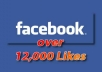  I will give you 12,000+ likes Facebook likes, fans. etc(updated May 2013)