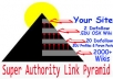 create a link pyramid with dofollow EDU links and 2000+ wikis I will also spin your article for free @!