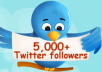 add high quality 12500+ real looking twitter followers to your account in less than 5 day without admin access