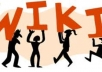 I will create 18000+ contextual backlinks from 6000 wikis!~!~!@@
