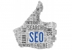 I will do the perfect white hat seo for you and will Guarantee one month of Google Organic Traffic