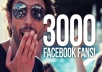 give you 3000+ 100% LEGITIMATE Facebook Likes to Your FanPage within 72hrs