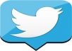 give you 2000+ real looking twitter followers without any admine access 