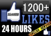I would like to deliver 1000 additional 200 likes on your facebook fans page in just 24 to 48 hour