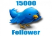 add 15000 High Quality real looking permanent twitter followers to your twitter account in less than 25 hours
