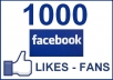 Give u 1000+ (100%) Real Facebook Fanpages Likes.!